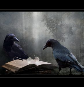 Två kråkor och en bok
